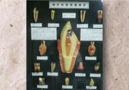 伊藤歯科医院(eiko dental)