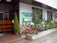 医療法人社団大野歯科医院