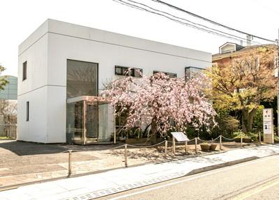 横浜山手デンタルクリニック