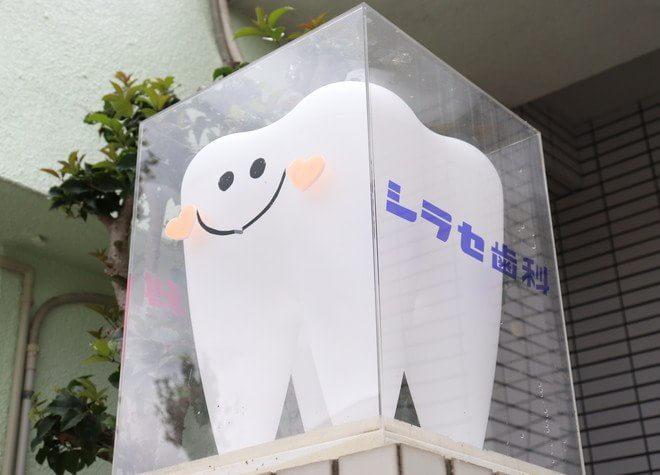 シラセ歯科